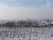 kenzingen_winter01