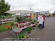 Pflanzenbörse 2015